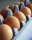 Eieren in karton Royalty-vrije Stock Afbeelding