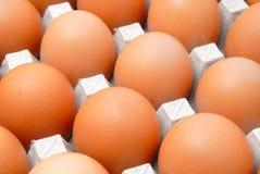 Eieren in kartonverpakking Royalty-vrije Stock Afbeeldingen