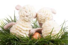 Eieren, koekoeksbloem en gestreepte doek Stock Foto's