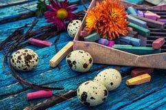 Eieren, koekoeksbloem en gestreepte doek Stock Fotografie