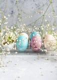 Eieren, koekoeksbloem en gestreepte doek Royalty-vrije Stock Foto