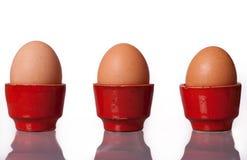 Eieren in Koppen Stock Afbeelding