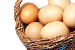 Eieren in mand Stock Afbeeldingen