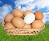 Eieren in mand. Royalty-vrije Stock Afbeeldingen