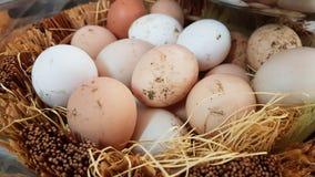 Eieren in mand vuile ongewassen royalty-vrije stock afbeeldingen