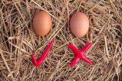 Eieren met controlesymbool jpg Stock Fotografie