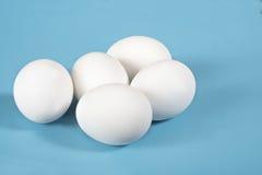 Eieren op blauw stock afbeeldingen