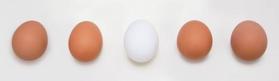 Eieren op een rij, op witte achtergrond worden geïsoleerd die Royalty-vrije Stock Afbeelding