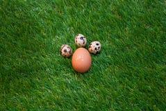 Eieren op gras Royalty-vrije Stock Fotografie