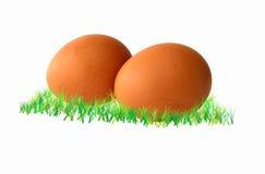 Eieren op groen gras Royalty-vrije Stock Afbeeldingen