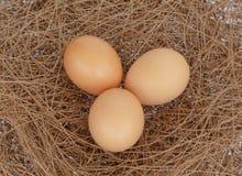 Eieren op hooinest backgorund Royalty-vrije Stock Afbeeldingen