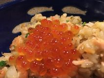 Eieren op Japanse rijst Stock Fotografie