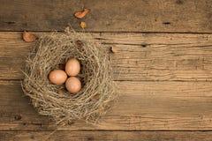 Eieren op oud hout Stock Foto
