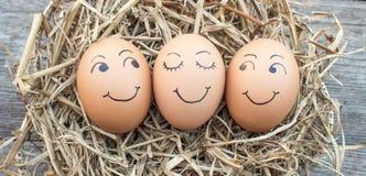 Eieren op stro worden gelegd dat Stock Afbeelding