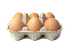 Eieren op Wit Stock Foto
