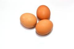 Eieren op witte achtergrond Royalty-vrije Stock Afbeelding
