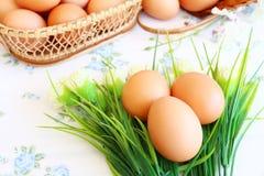Eieren oude uitstekende stijl Stock Foto