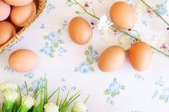 Eieren oude uitstekende stijl Royalty-vrije Stock Foto's