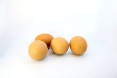 Eieren over witte achtergrond Royalty-vrije Stock Foto's