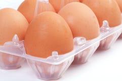 Eieren in plastic doos Stock Afbeeldingen
