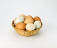 Eieren in rieten mand Royalty-vrije Stock Foto's