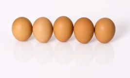 Eieren in rij stock afbeeldingen