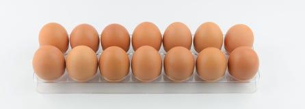 Eieren in rij twee Stock Afbeeldingen