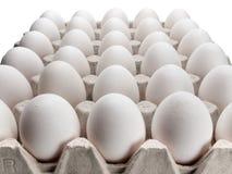 Eieren van een kip in verpakking op een witte achtergrond. Stock Afbeeldingen