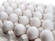 Eieren van een kip in verpakking op een witte achtergrond. Stock Foto