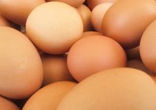 Eieren voor achtergrond Stock Foto's