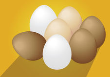 Eierenvector, eierenvector op gele achtergrond Stock Foto
