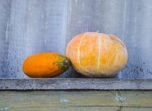 Eierkürbis und gelber Kürbis auf einer Holzbank Lizenzfreie Stockfotos