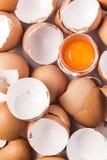 Eierschale und Eigelb Lizenzfreies Stockfoto