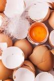 Eierschale und Eigelb Lizenzfreies Stockbild