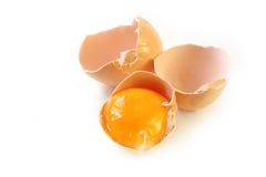 Eierschalen und Eigelb stockfotos