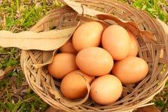 Eiester im Korblebensmittel Stockfotos