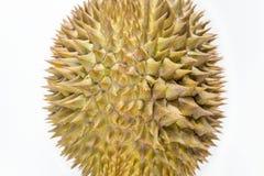 Eiförmiges geformtes der Durianfrucht lokalisiert auf weißem Hintergrund stockfotografie