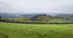 Eifel sceneria Zdjęcia Stock