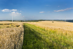 Eifel Summer Fields, Germany Royalty Free Stock Image