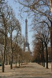 Eifel Tower Royalty Free Stock Photo