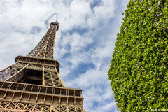 Eifel verde Fotografia Stock