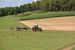 Eifel w Niemcy z krowami i ciągnikiem Zdjęcie Stock