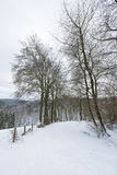Eifel Winter Landscape Near Monschau, Germany Stock Photos