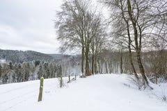 Eifel zimy krajobraz Blisko Monschau, Niemcy Zdjęcie Royalty Free
