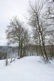 Eifel zimy krajobraz Blisko Monschau, Niemcy Zdjęcia Stock