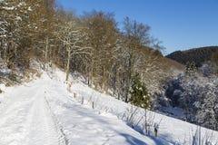 Eifel zimy krajobraz I niebieskie niebo, Niemcy Zdjęcia Royalty Free