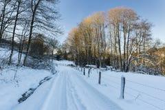 Eifel zimy krajobraz I niebieskie niebo, Niemcy Zdjęcie Royalty Free