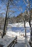 Eifel zimy krajobraz, Niemcy Obraz Stock