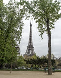 Eifell Tower through trees Stock Photography