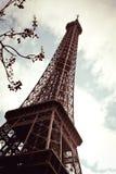Eiffel Royalty-vrije Stock Afbeeldingen